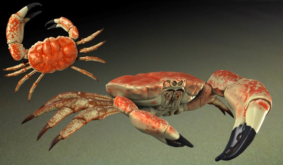 "Top 10 Facts about ""king Crab""."